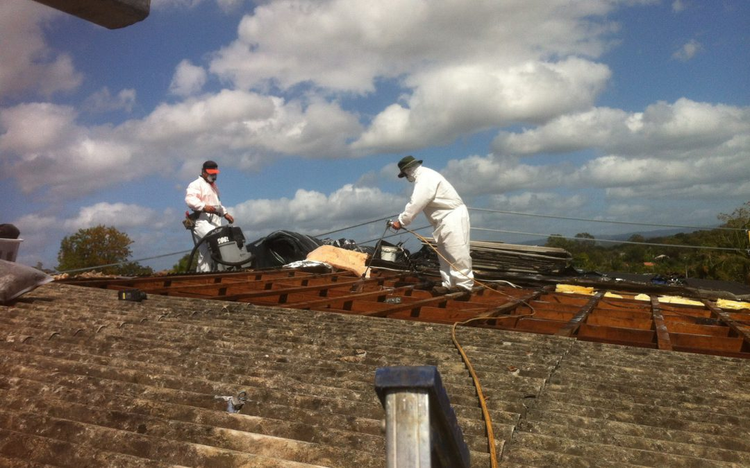 Asbestos roof removal what to expect on the day