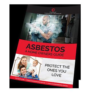 e book - asbestos-guide