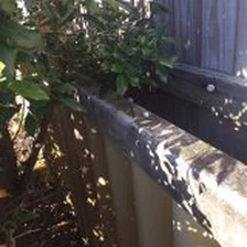 roof fence 1 - Is your Asbestos Roof, Fence & Gutter safe?